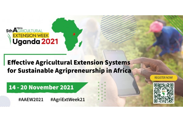 Effective Agricultural Extension Systems for Sustainable Agripreneurship in Africa